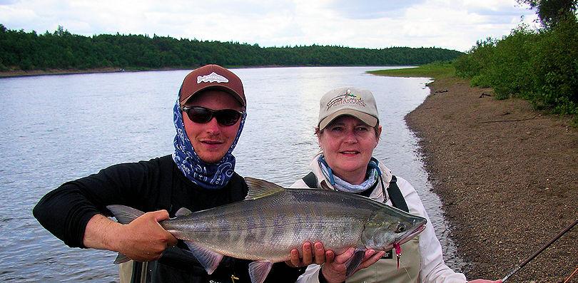 alaska-salmon.jpg