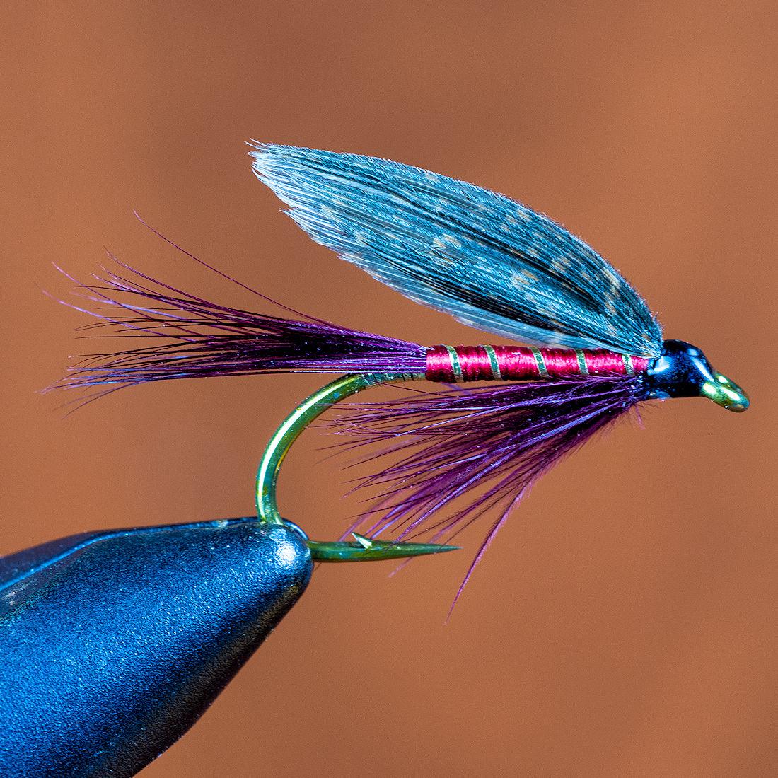 the-dark-montreal-fly-02-lrg.jpg