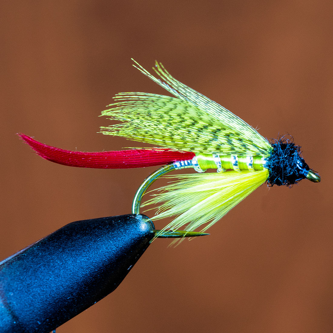 the-tim-fly-02-lrg.jpg