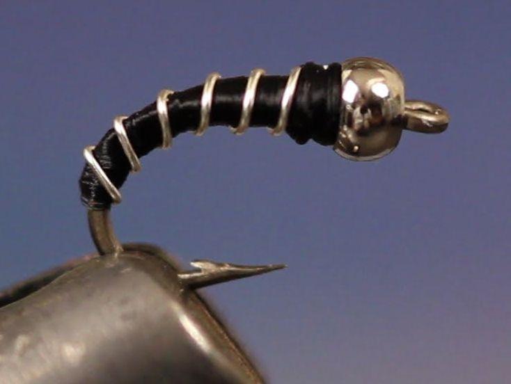 zebra-midge.jpg